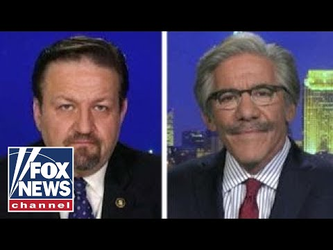 Geraldo Rivera, Sebastian Gorka on Trump's 'animals' comment