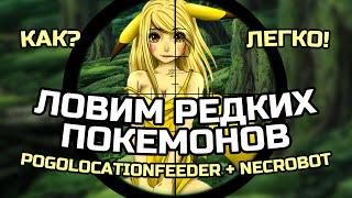 Pokemon GO, ловим РЕДКИХ и САМЫХ СИЛЬНЫХ ПОКЕМОНОВ (инструкция для новичков!)