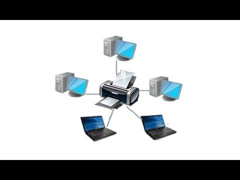 Как настроить общий доступ к принтеру в Windows 10