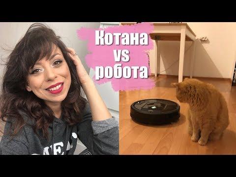 Романтика за празника I Котана vs робота - Първи впечатления от iRobot Roomba 980