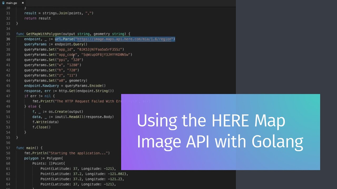 Using the HERE Map Image API with Golang