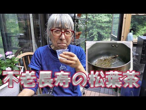 ぼけない、剥げない頭 老化防止に血液サラサラ 毒素排出、高血圧に松葉茶