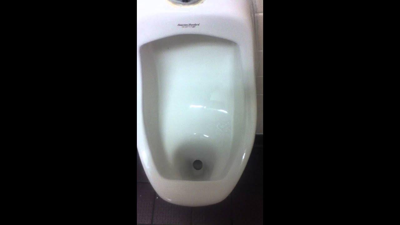 as allbrook urinal u0026 kohler cimarron toilet wendyu0027s sj ca