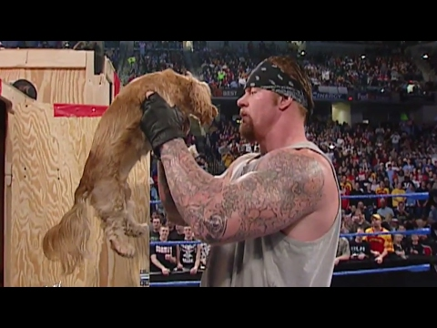 Thumbnail: Big Show gives The Undertaker a puppy: SmackDown, Feb. 20, 2003