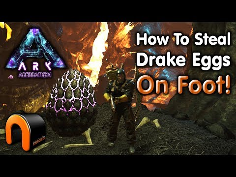 ARK - HOW TO GET YOUR FIRST DRAKE EGG ON FOOT! Aberration