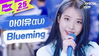 Download lagu IU(아이유) 'Blueming(블루밍)' 라이브🎤🎤(밴드ver.) | 가사 | 스페셜클립 | Special Clip | LYRICS [4K]