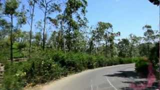 India 2012: Road from Cochin to Thekkady (Part 2)