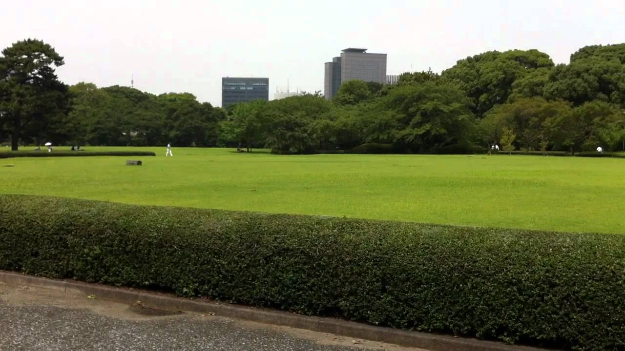 皇居散策】本丸大芝生を横切り ...