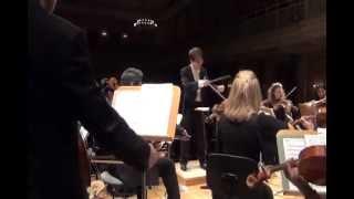 Silvester Konzert 2012, Berliner Camerata