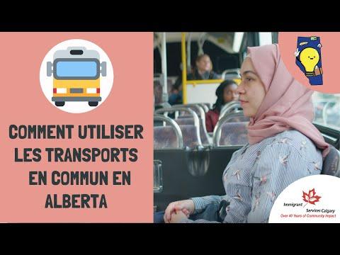 Comment  Utiliser Les Transports En Commun En Alberta / How To Ride Transit In Alberta