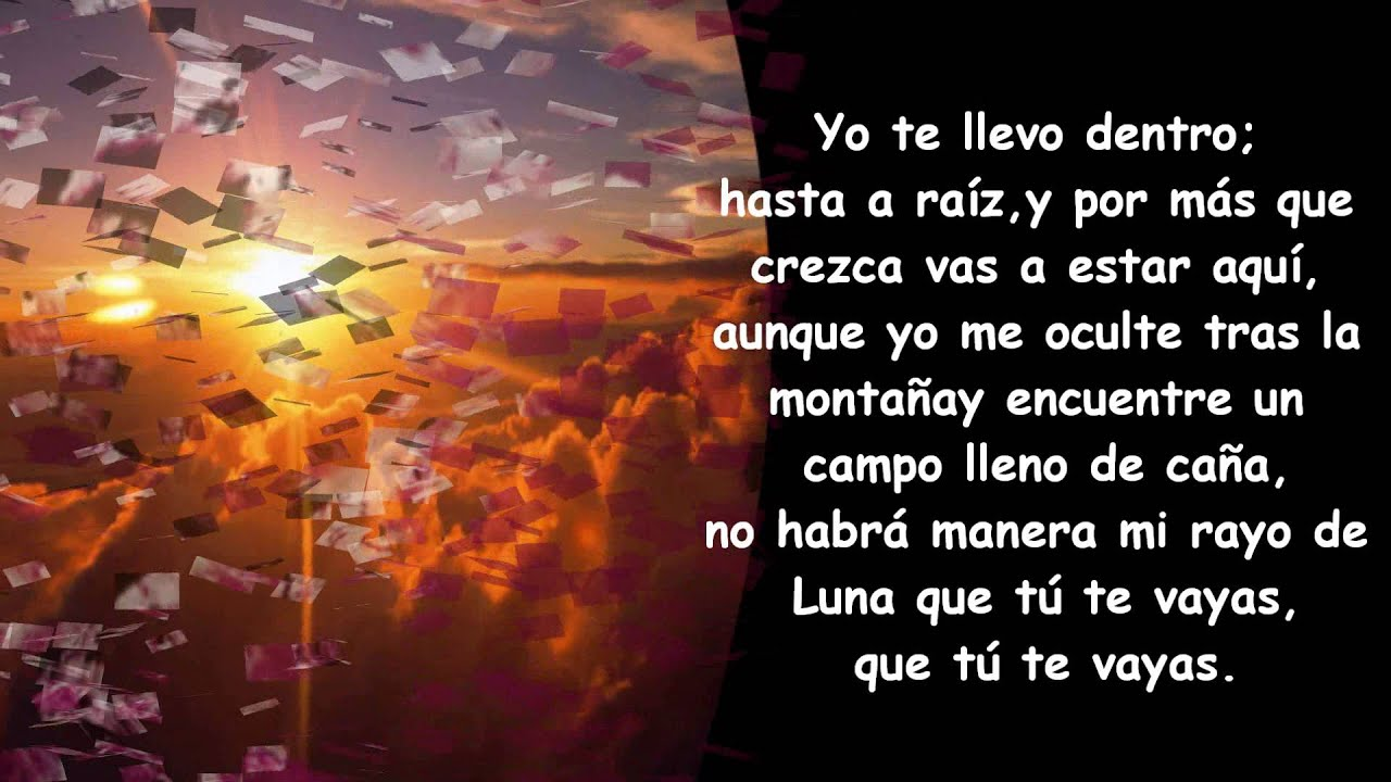 b089128d74 Hasta la Raíz Natalia Lafourcade - YouTube