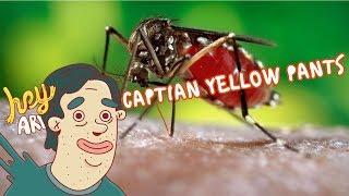 Héroes de la ciencia: Max Theiler Capitán Yellow Pants - Hey Arnoldo