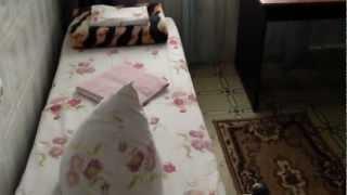 Гостиница Краснодара Мотель 444(Гостиница Краснодара