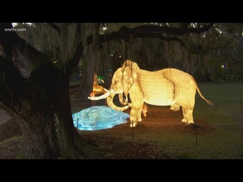 An Exclusive Look at the new Audubon Zoo Lights