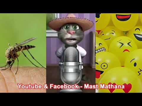 Mosquito Song(Hindi) by Talking Tom.🤓🤣🤣😻