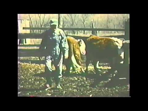 Rare vintage farming on 8mm film