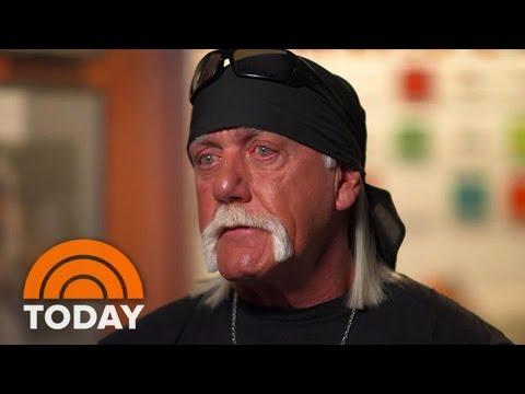 Hulk Hogan Offered Open Chequebook Porn Company