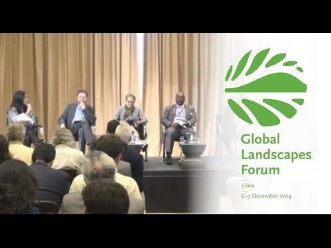 Large-scale land restoration – creating the conditions for success
