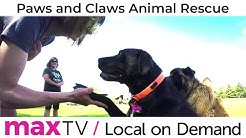 SaskTel maxTV Local on Demand - Paws and Claws Animal Rescue