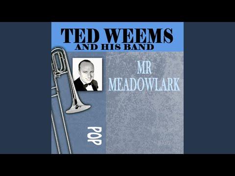Mr. Meadowlark