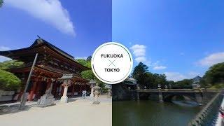 皇居-東京x大宰府-福岡