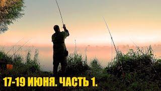 Рыбалка Три Дня Июня на Реке После Окончания Нерестового Запрета Донки Резинка на Хищника 1ЧАСТЬ