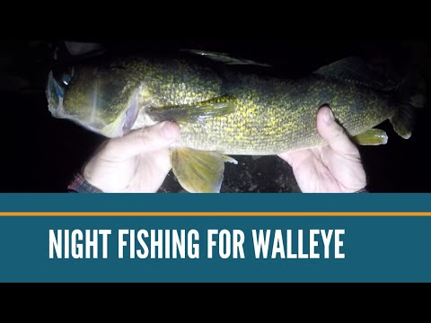 Night Fishing For Walleye // Night Fishing From Shore // Salvage Bait Co. // Best Lure For Walleye