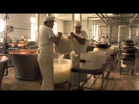 The Making of Parmigiano Reggiano Cheese - Part 3