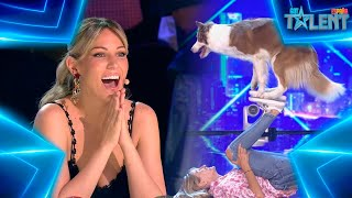 This DANCING DOG will impress you with his CHOREOGRAPHY   Auditions 1   Spain's Got Talent 7 (2021)