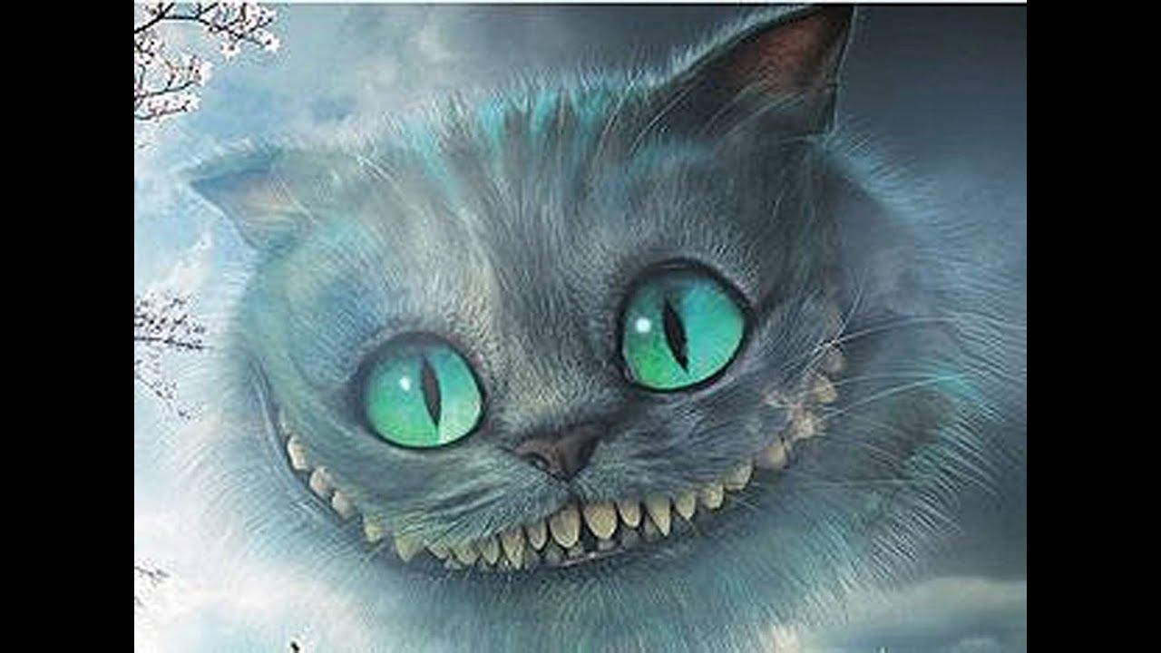 Кто такой чеширский кот видео