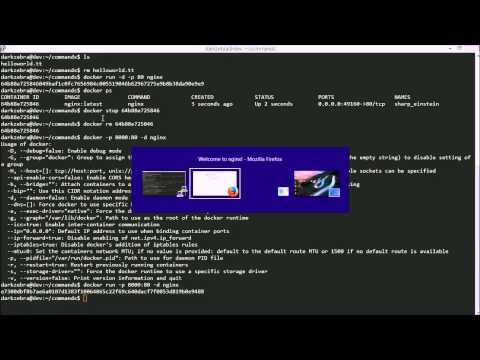 Docker Tutorial: Basics of the Docker Run Command