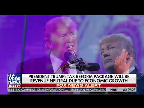 Rand Paul on Donald Trump