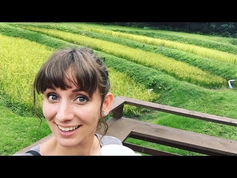 A Day with a Japanese Organic Farmer!