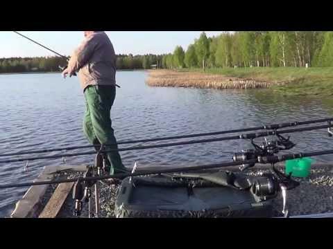 ловля рыбы в брестском районе