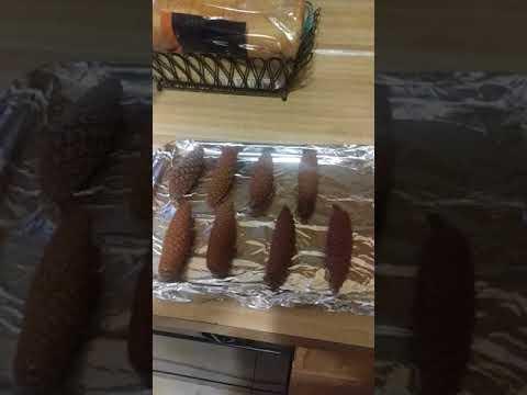 Preparing pine cones for crafts by Lattanzi Creations