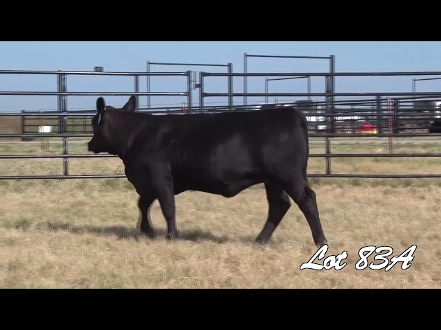 Pollard Farms Lot 83A