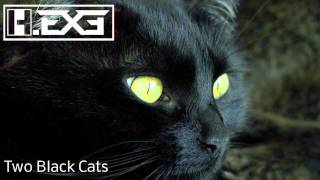 H.EXE - Two Black Cats