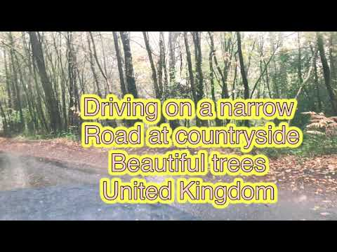 Driving on a Narrow road country side , beautiful trees , United kingdom