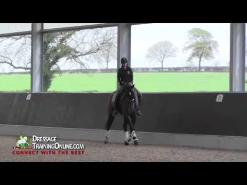 Gareth Huges, Method For Starting Young Horses