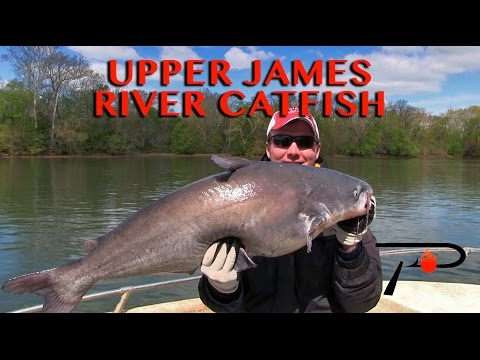 Richmond's Kitties: James River Catfish Fishing