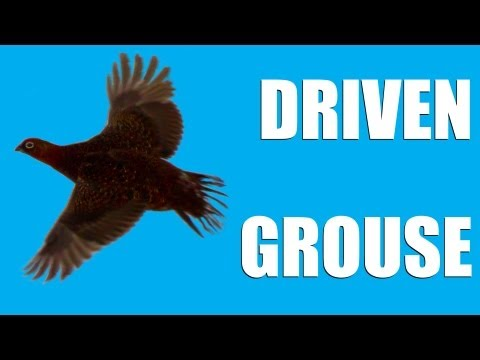 Fieldsports Britain : Driven grouse, Birr Castle game fair and foxing  (episode 144)