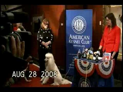 Presidential Pup Press Conference