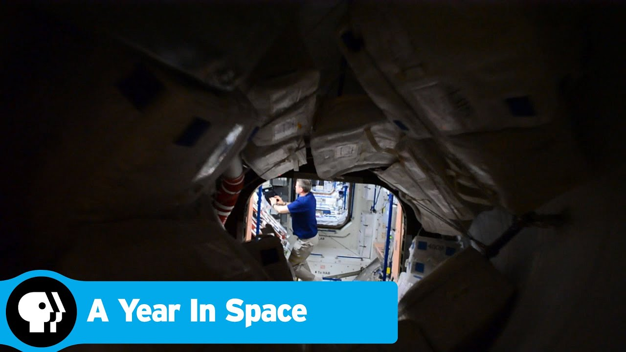 A YEAR IN SPACE | Space Station | PBS - YouTube
