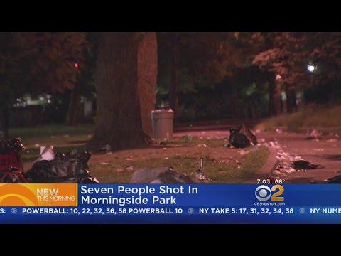 7 Shot In Morningside Park
