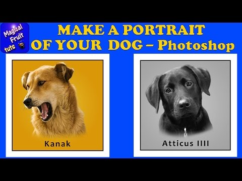 Photoshop: Make a Simple Portrait of your Dog from a Photo