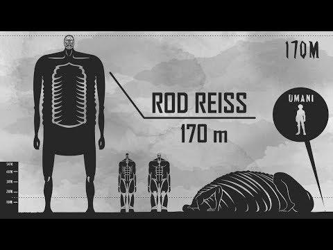 The Biggest Titan Of All - Attack on Titan Size Comparison - [SPOILER]