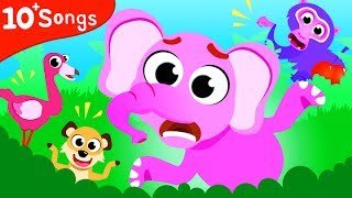 Where Are My Friends! Mr. Elephant Lost Find His Friends | Jungle Animals by Little Angel