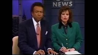 Michele Marsh Reporter Wikivisually