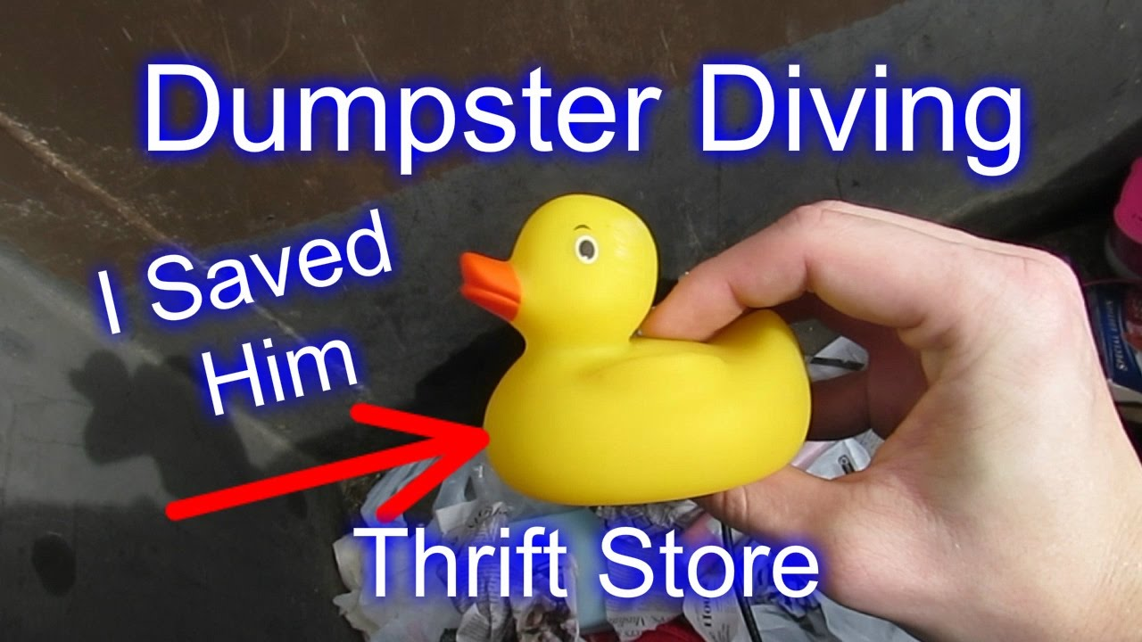 dumpster diving at thrift store  dumpster diving at thrift store 16