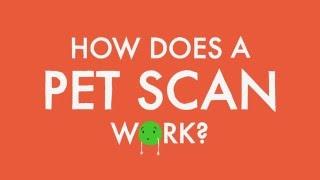Wie funktioniert ein PET-scan funktioniert?